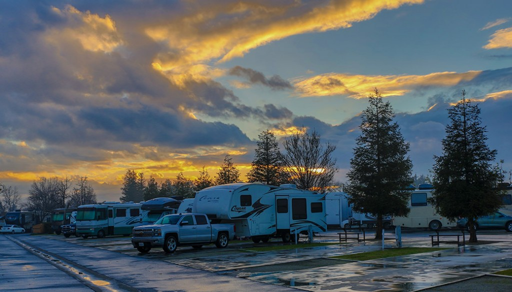 A Country RV Park in Bakersfield