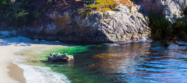 cTv, Pacific Ocean playing at Point Lobos and New Brighton State Beach