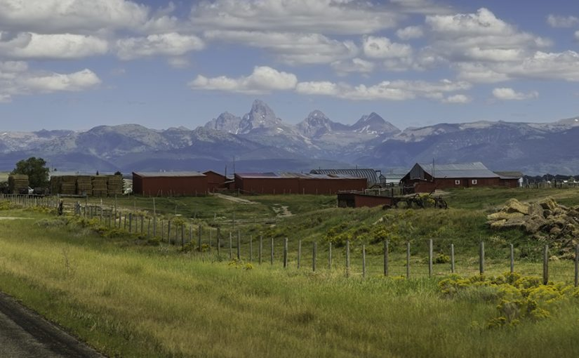 Grand Tetons, Jackson Hole, Evolution Ranger Talk